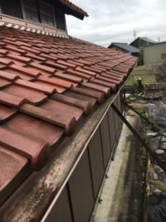 IMG_7269 瓦屋根